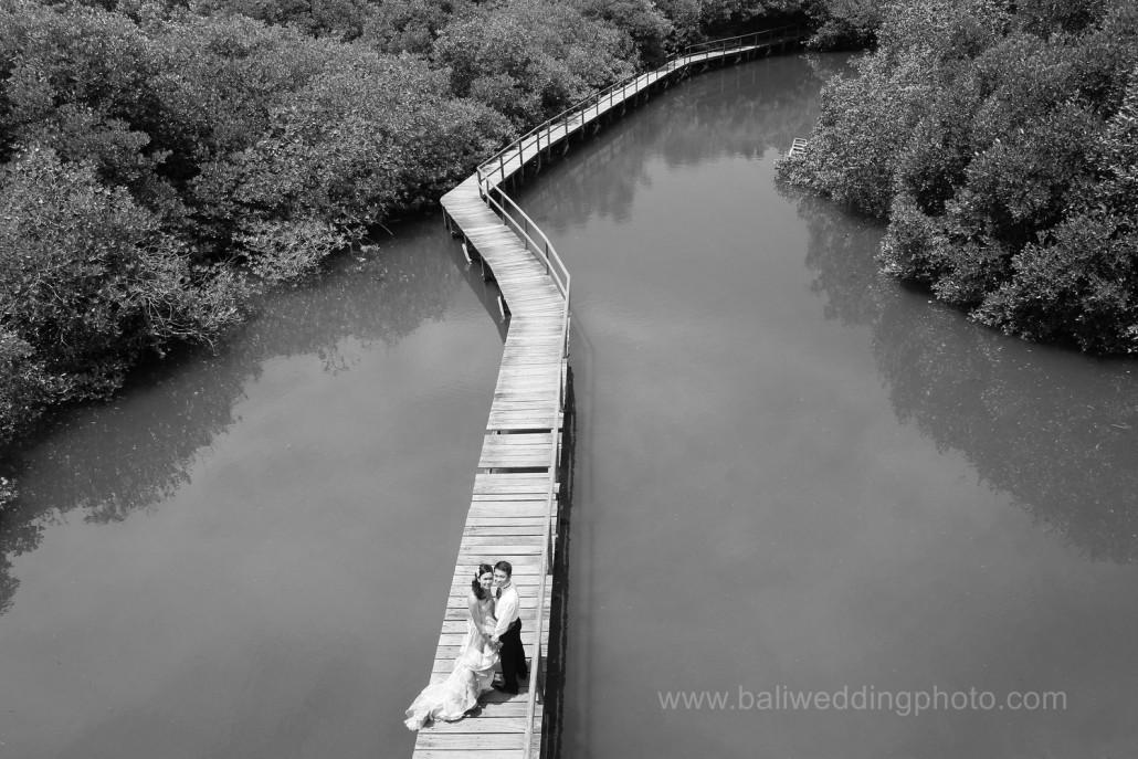 Mangrove Forest Bali